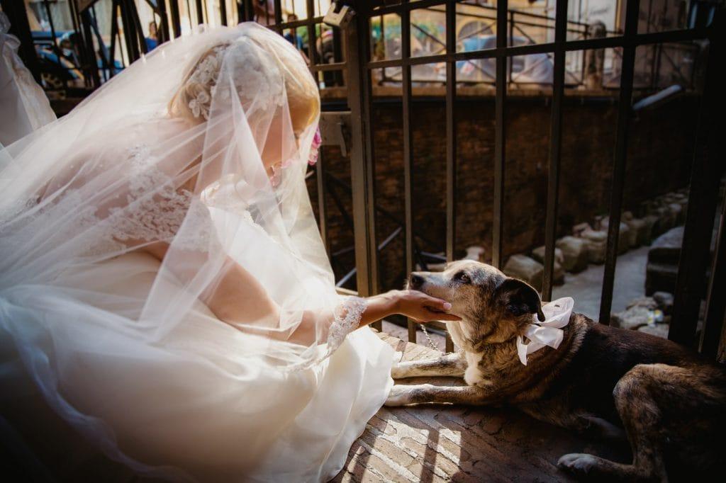 fotografo matrimonio villa miani la sposa con il suo cane
